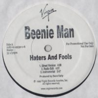 Beenie Man - Haters And Fools - Analys This - vinyl -www.jiggyjamz.com - Dancehall Reggae...