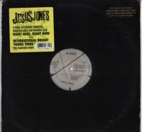 Jesus Jones - Right Here, Right Now - vinyl - www.jiggyjamz.com