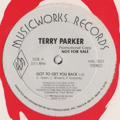 Terry Parker - Got To Get You Back - freestyle - www.jiggyjamz.com