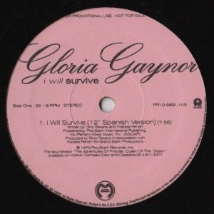 Gloria Gaynor-Alicia Bridges - I Will Survive-I Love The Nightlife - house music vinyl - disco remixes - spanish version - www.jiggyjamz.com