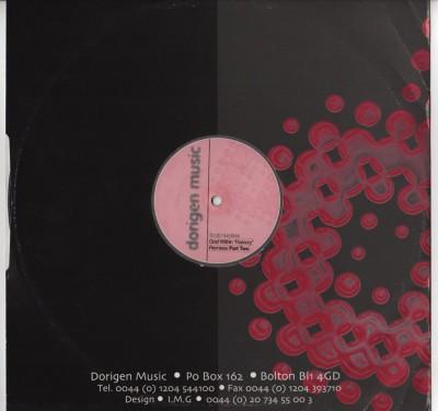 Scott-Hardkiss-Presents-God-Within-Raincry-remix-pt-2- vinyl - ww.jiggyjamz.com