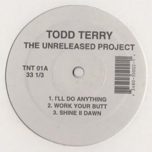 Todd Terry - Unreleased Project 1 - Classic House Music Vinyl - www.jiggyjamz.com